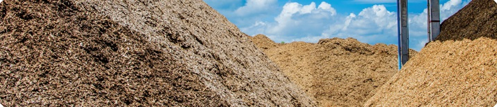 Molecules corn stalks wood chips biomass