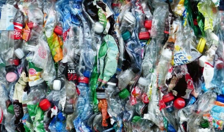 Plastic Degrading Enzyme plastic waste