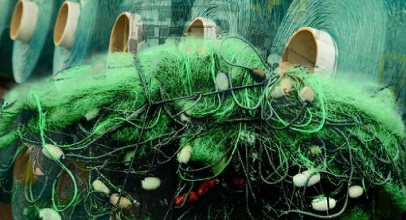 Carvico fishing net swimwear