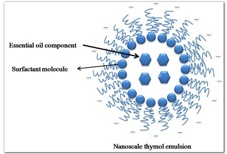 Natural nanobiotechnology synthetic agrochemicals