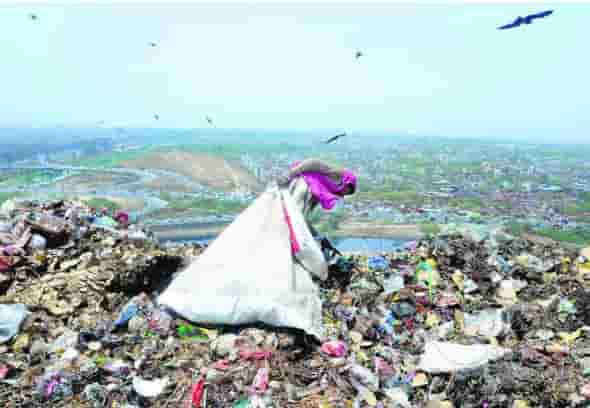 Plastic ban polythene bags environment pollution