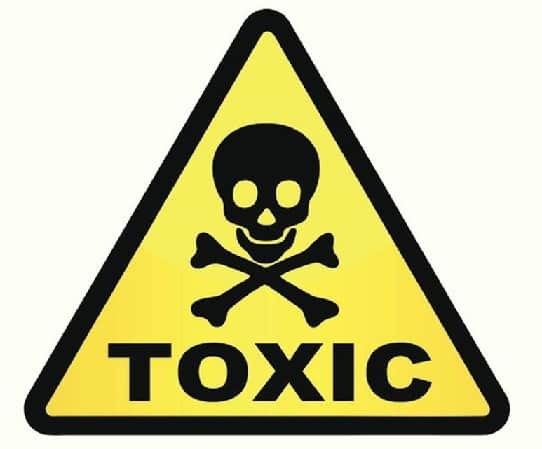 Dangers Food Water Plastic Containers plastic toxins