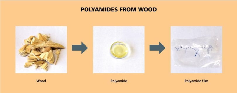 100 percent biobased transparent thermally stable polyamide