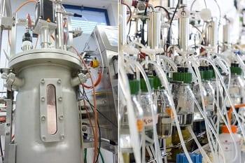 Global Bioenergies Isobutene process