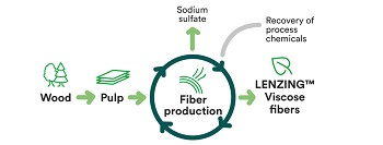 Plastic Petrochemicals recycling biopolymers