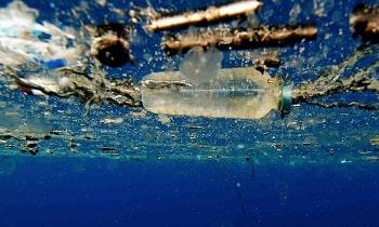 Plastic Petrochemicals recycling bioeconomy
