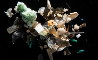 Circular economy bioplasticplastic recycling