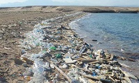 Plastic chemicals recycling circular economy