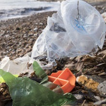 Microbiology plastics circular economy