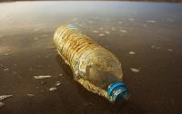 Plastic petrochemicals PET biodegradable