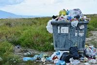 Plastic Renewability