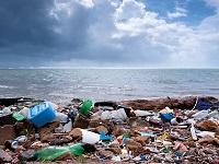 Thermoplastics Petrochemicals Bioplastics