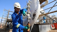 Petrochemical Oil Sanctions Polyester