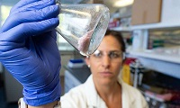 Australian researchers discover how to reclaim polyester