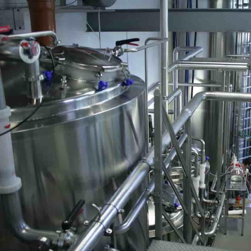 Genomatica Industry Nylon Sustainability