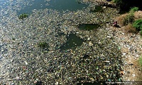 Malaysia is not Asia's top ocean plastic polluter