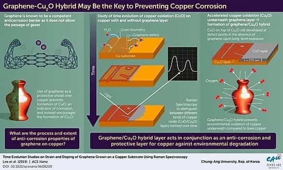 Petrochemicals Bioeconomy Polyolefins