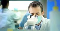 Canada university develops bacteria-repellent plastic surface