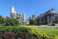 Petrochemicals Enzymes Automotive PA