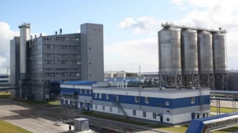 "Kaliningrad Group of Companies ""Ekopet"" for sale"