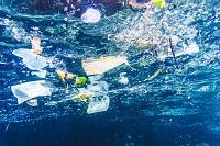 Sort your plastics for proper recycling