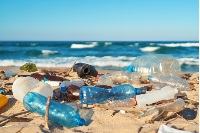 Are oxo-biodegradable plastics bad for the environment?
