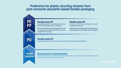 Petrochemicals Biodegradable PET Flakes
