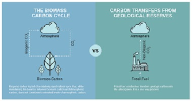 Not all carbon emissions are equal?