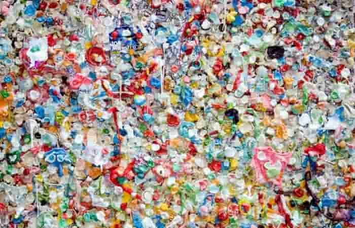 Bioplastics contain substances that are just as toxic as ordinary plastics