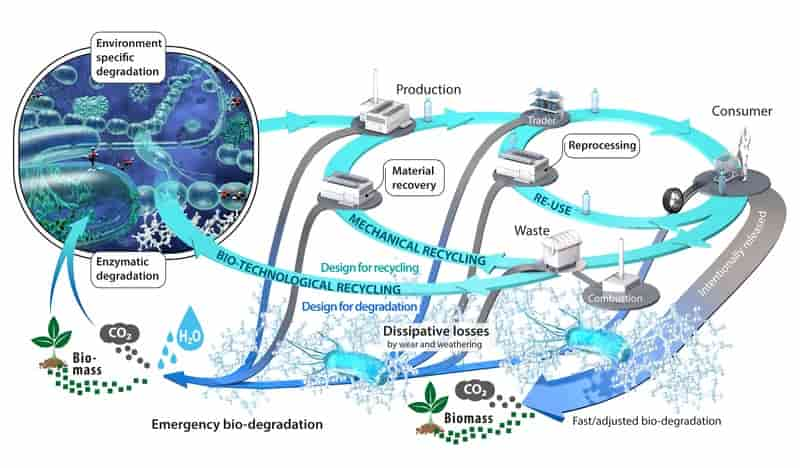 Possibilities and limitations of biotechnological plastic degradation and recycling