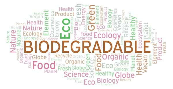 Biodegradation is Not a Sustainable Silver Bullet