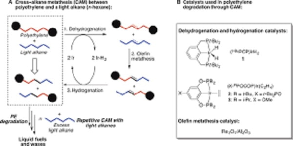 -Catalytic Hydrogenolysis of Polyolefins into Alkanes