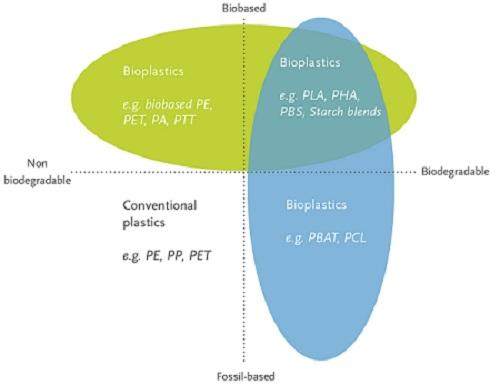 Bioplastics, Biodegradable Plastics, & Compostable Plastics: What's the Difference?