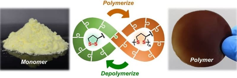 Molecule from nature provides fully recyclable polymers