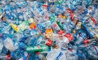 Plastic BioPolymers PET Polyolefins