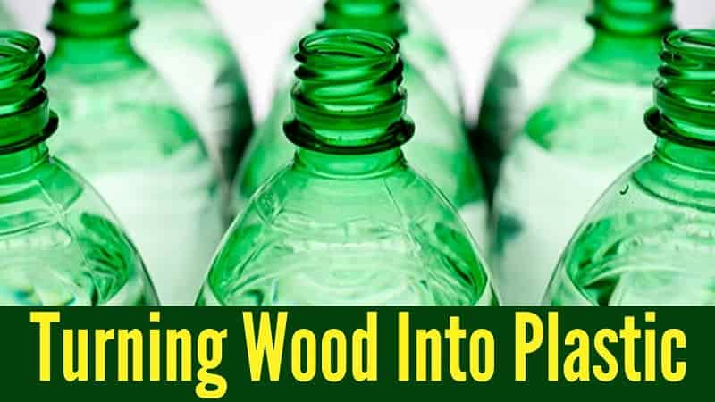 Turning wood into plastic