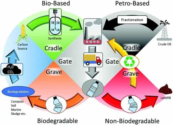 UK reviews biobased and biodegradable plastics