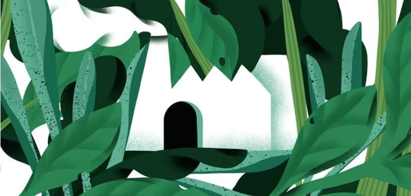 Avantium and Carbios Capitalize on Growing Bioplastics Demand