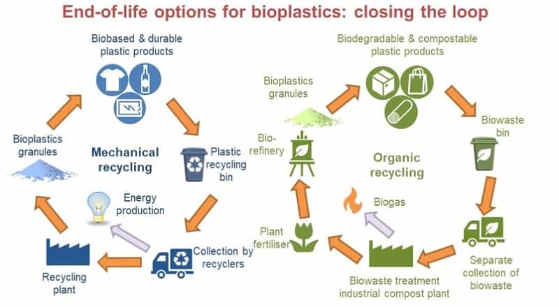 Biodegradation can provide meaningful end-of-life option