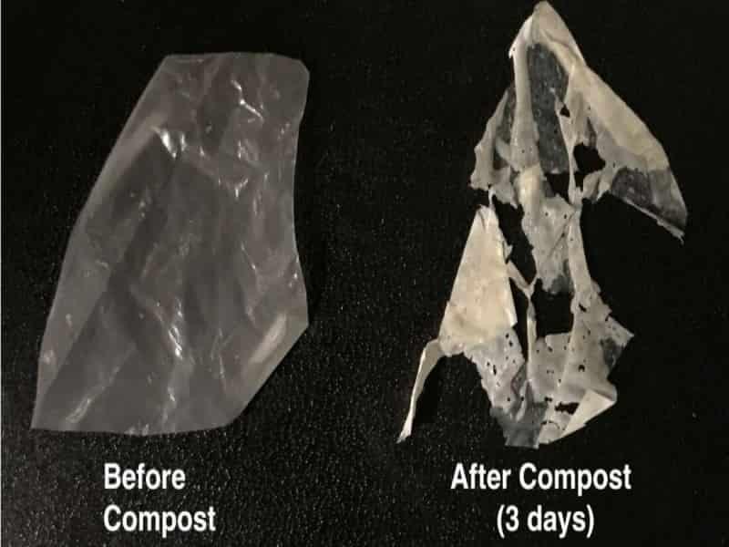 Breakthrough in Degradable Plastic