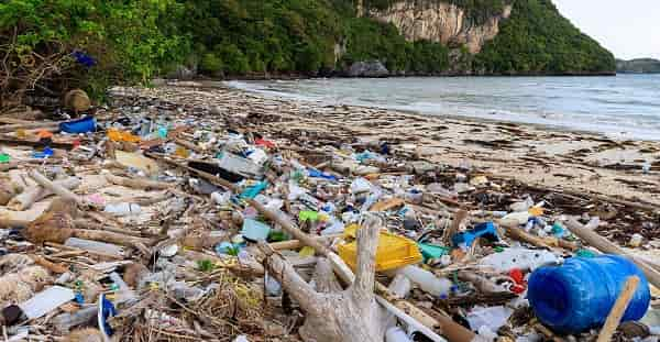 Twenty Companies Produce More than Half of the World's Plastic Waste, Claims Report