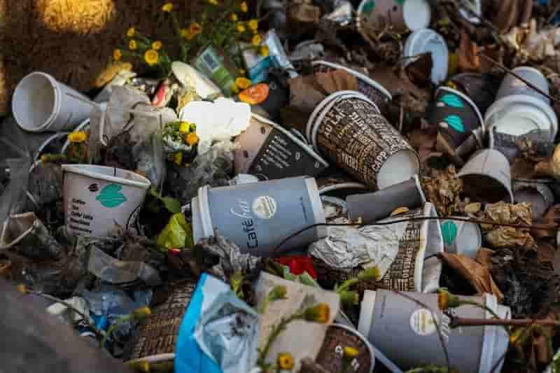 Compostable plastics: solution or just more plastic?
