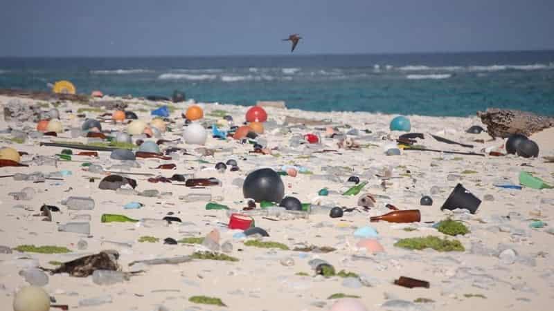 PlasticsRWaste Petrochemicals CO2Fabric
