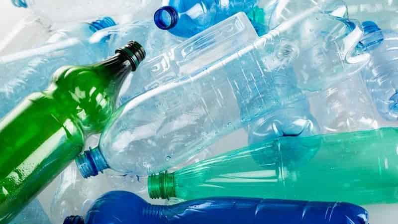 Greenpeace calls for government to ban plastic bottles