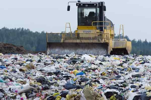 Bacteria Petrochemicals PlasticPollution