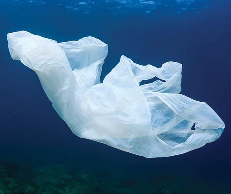 A novel green technology to transform the single-use plastic market