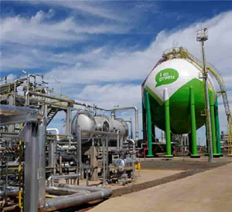 Braskem and SCG Chemicals to study joint investment into bio-based ethylene production for bio-based polyethylene in Thailand